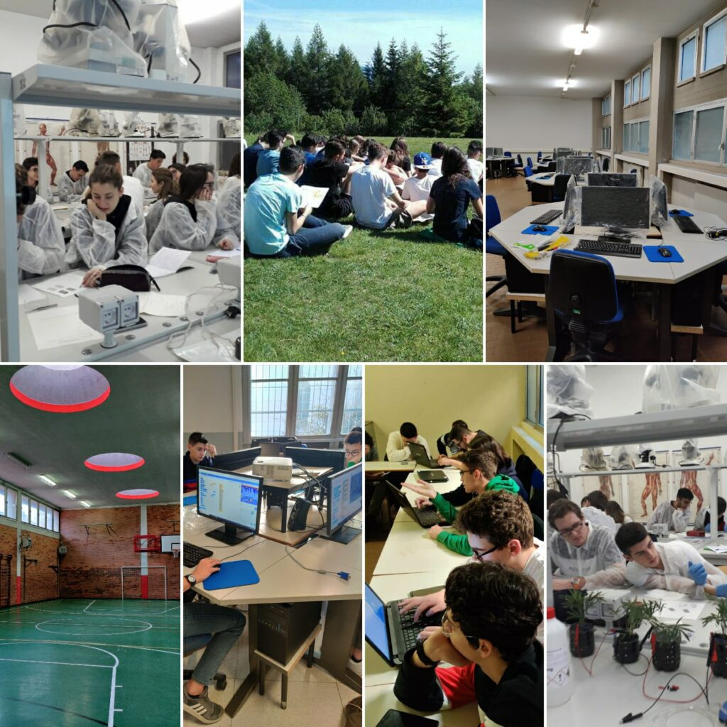 collage scienze e tecnologia